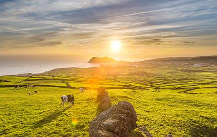 Viajar Solo a Azores Portugal