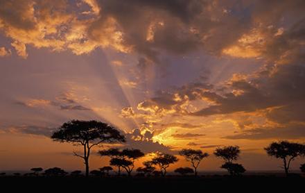 Viajar Solo a Kenia y Zanzibar